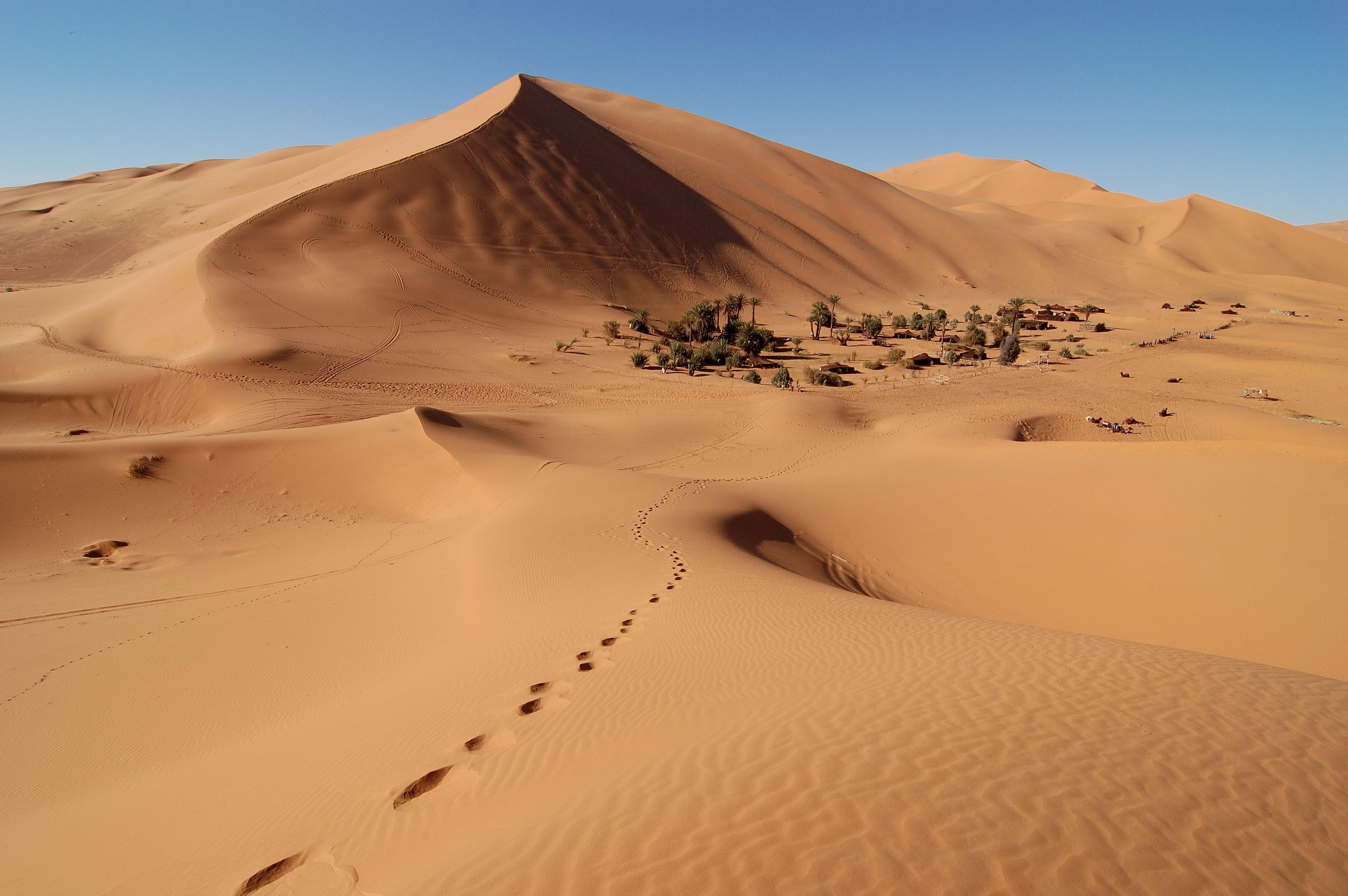 erg desert Gallery